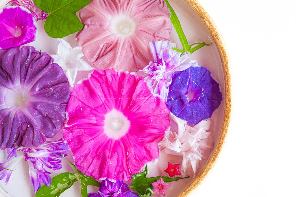 hotphoto_190804_09.jpg
